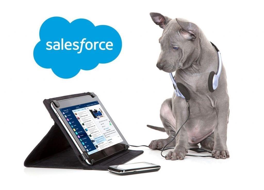 webinar salesforce july 6