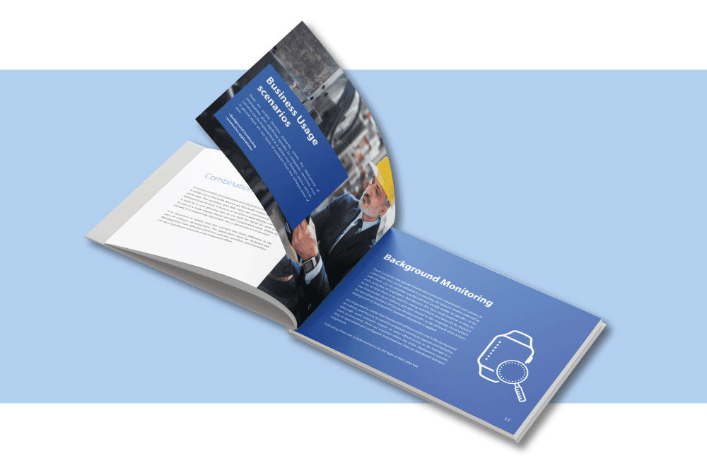 Inspections ebook preview